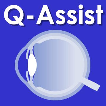 Q-Assist マイナー 2021【初年度プラン】