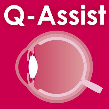 Q-Assist マイナー 2020【初年度プラン】