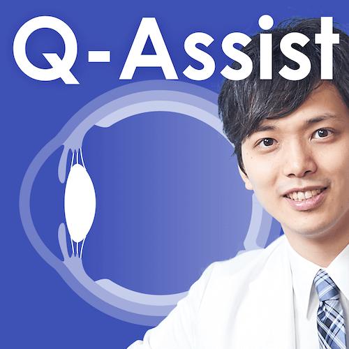 Q-Assist マイナー