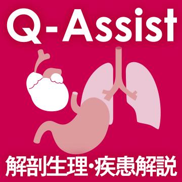 Q-Assist 内科・外科(解剖生理・疾患解説編)【QB購入者限定】